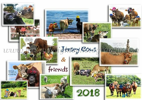 A calendar of our wonderful Jersey Cows with a little twist courtesy of technology and a person on our team who believes life is about being happy. Also contains some humourous poetry.