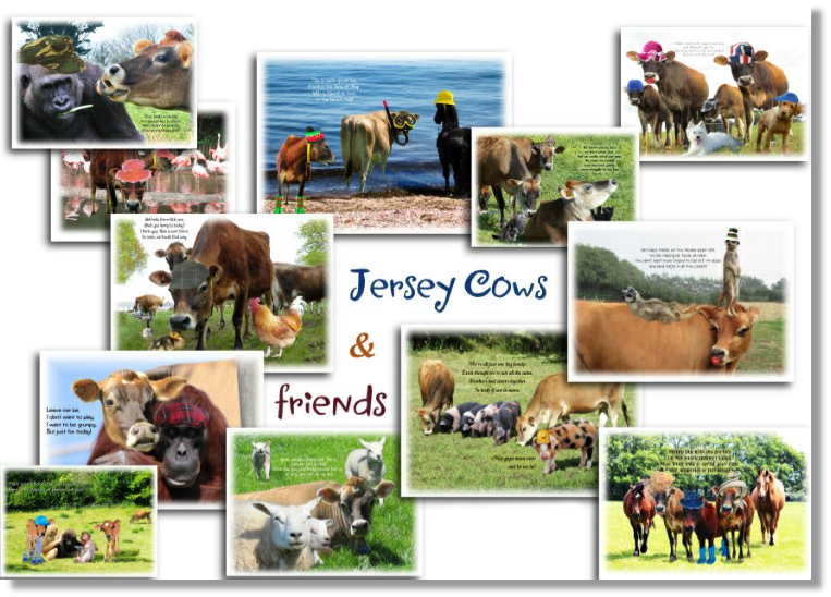 Our gallery of calendars at Jersey Delights - click here to view our full range